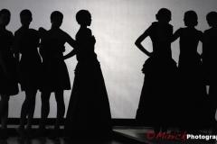 FashionSilhouette110311
